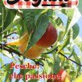 La copertina di DeGusto