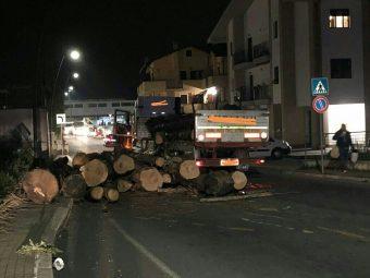 Camion perde carico di tronchi a Valle dell'Oste: strada chiusa
