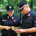 Caccia: due denunce tra Artena e Valmontone, lacci sequestrati nel Parco a Velletri