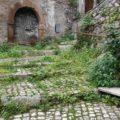 Artena: polemica per l'erba nella villa ma per quella tra case e allergici?