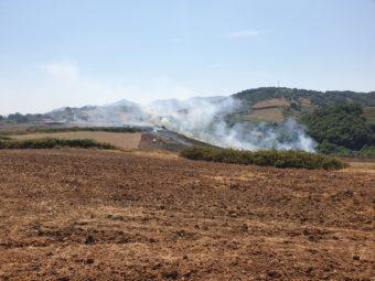 Brucia la campagna di Artena. Protezione civile all'opera contro le fiamme